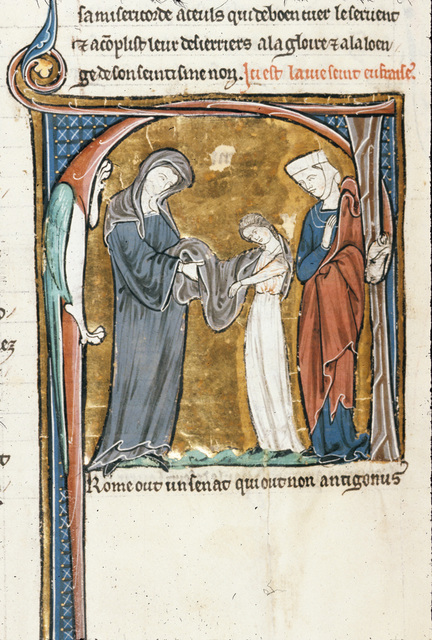 Eupharasia from BL Royal 20 D VI, f. 231v