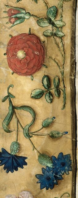 Flowers from BL Royal 1 E V, f. 3