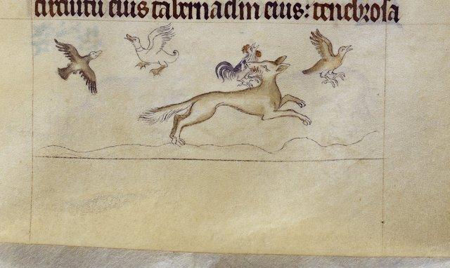 Fox from BL Royal 2 B VII, f. 100