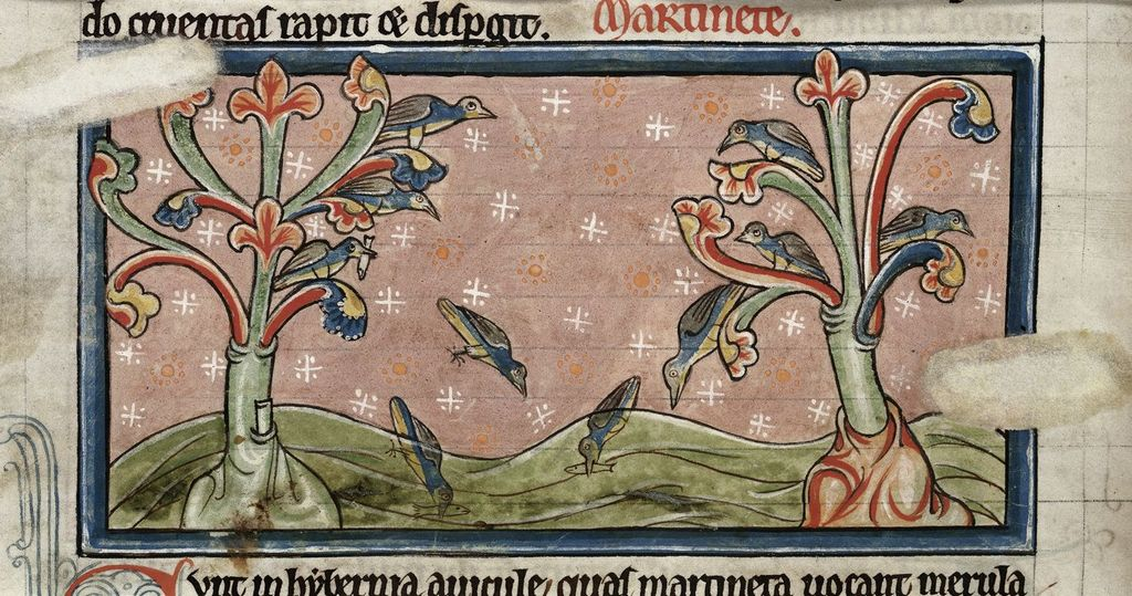 House martins from BL Harley 4751, f. 37v