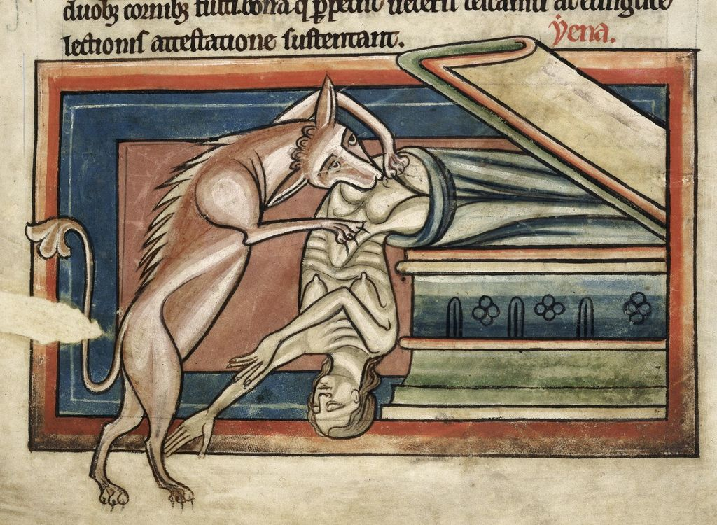 Hyena from BL Harley 4751, f. 10