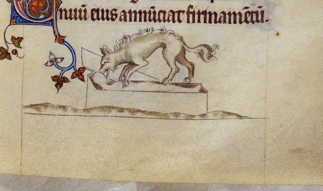 Hyena from BL Royal 2 B VII, f. 103