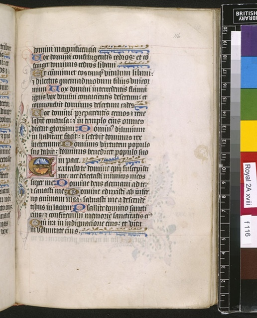 Illuminated initial from BL Royal 2 A XVIII, f. 116