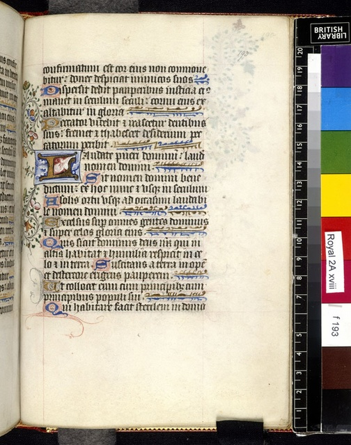 Illuminated initial from BL Royal 2 A XVIII, f. 193