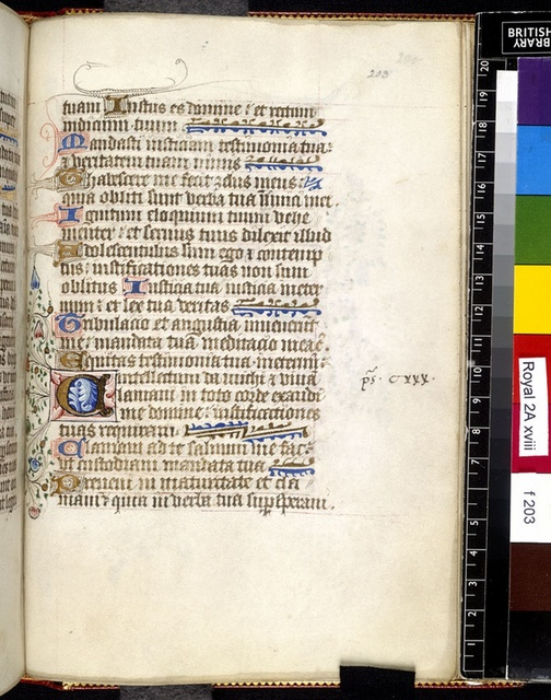Illuminated initial from BL Royal 2 A XVIII, f. 203