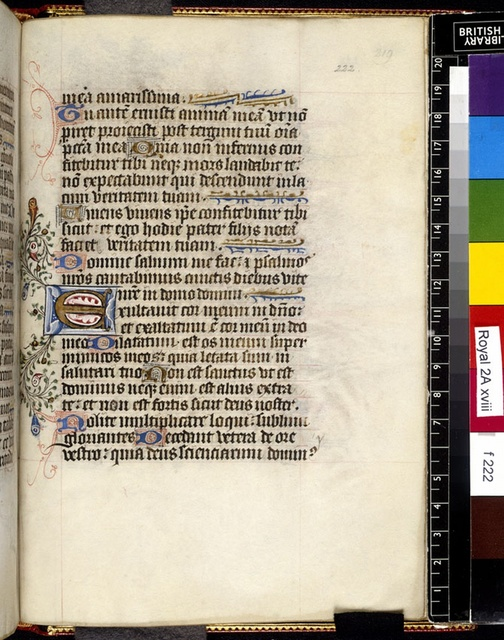 Illuminated initial from BL Royal 2 A XVIII, f. 222