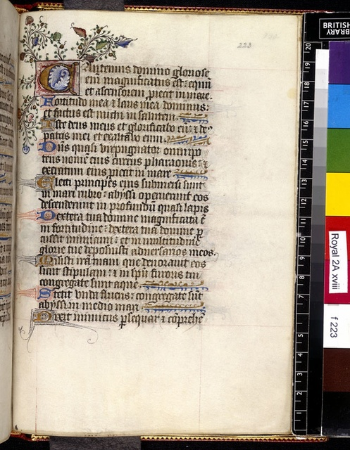 Illuminated initial from BL Royal 2 A XVIII, f. 223