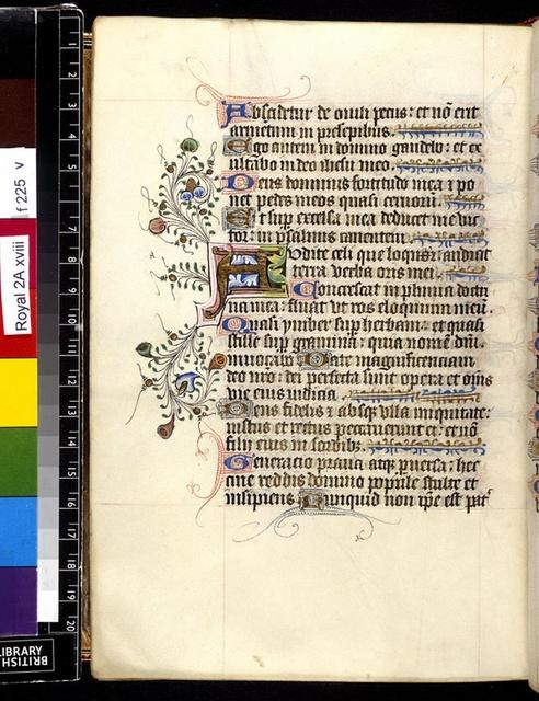 Illuminated initial from BL Royal 2 A XVIII, f. 225v