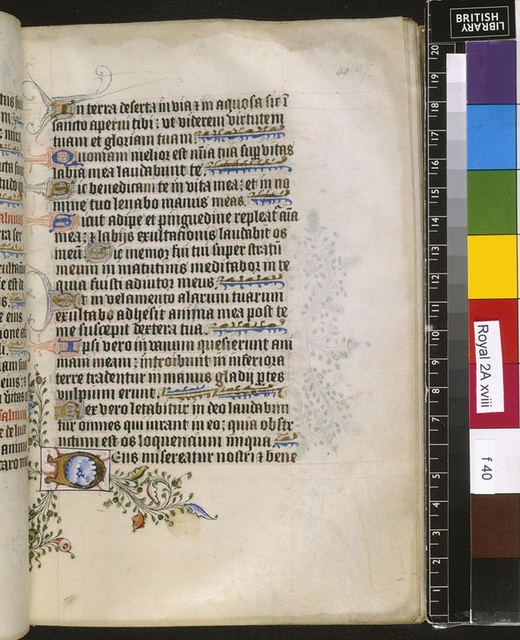 Illuminated initial from BL Royal 2 A XVIII, f. 40