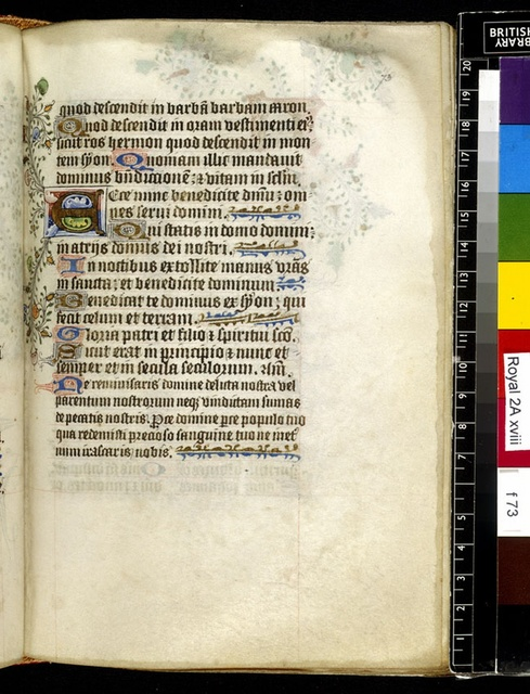 Illuminated initial from BL Royal 2 A XVIII, f. 73