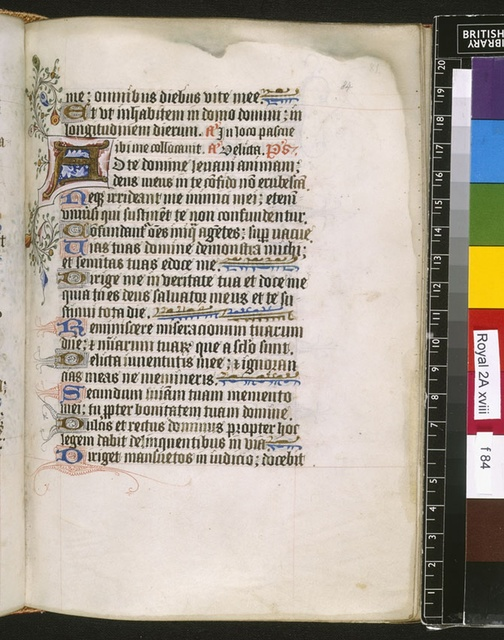 Illuminated initial from BL Royal 2 A XVIII, f. 84