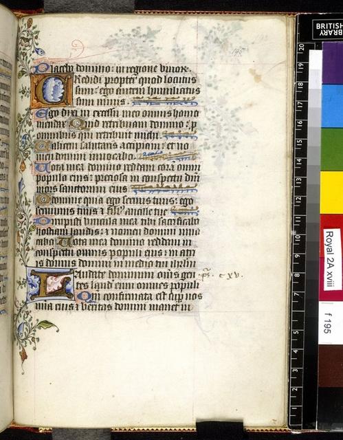 Illuminated initials from BL Royal 2 A XVIII, f. 195