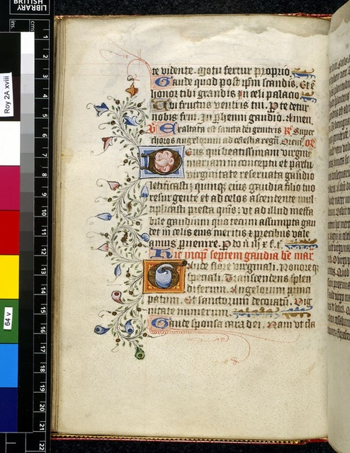 Illuminated initials from BL Royal 2 A XVIII, f. 64v