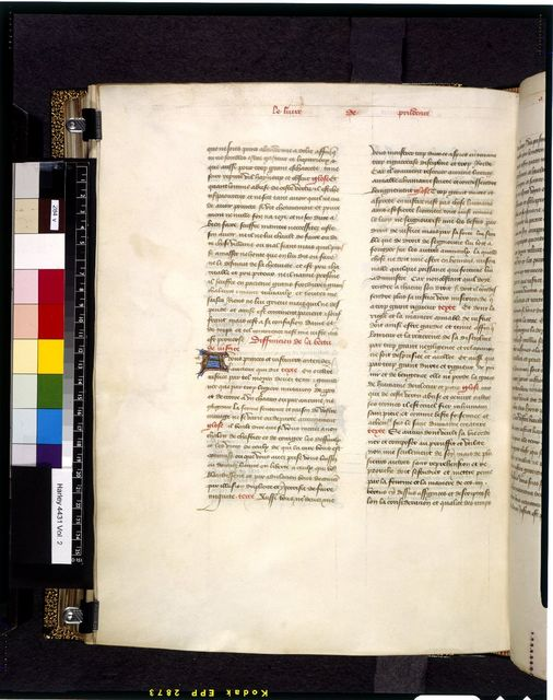 Image from BL Harley 4431, f. 284v