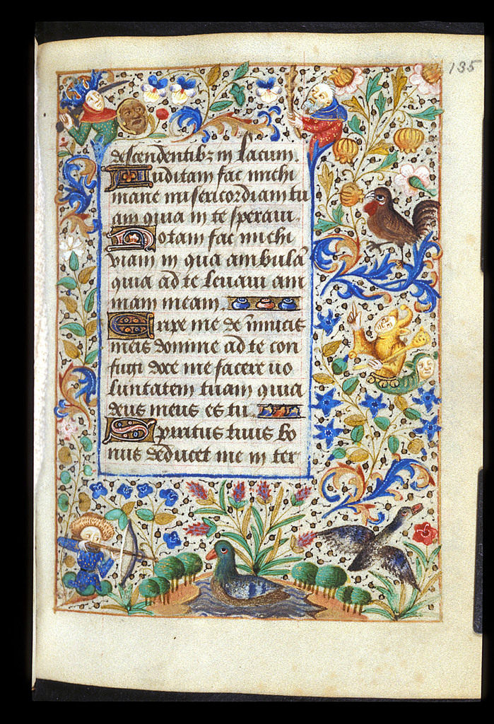 Image from BL Stowe 25, f. 135
