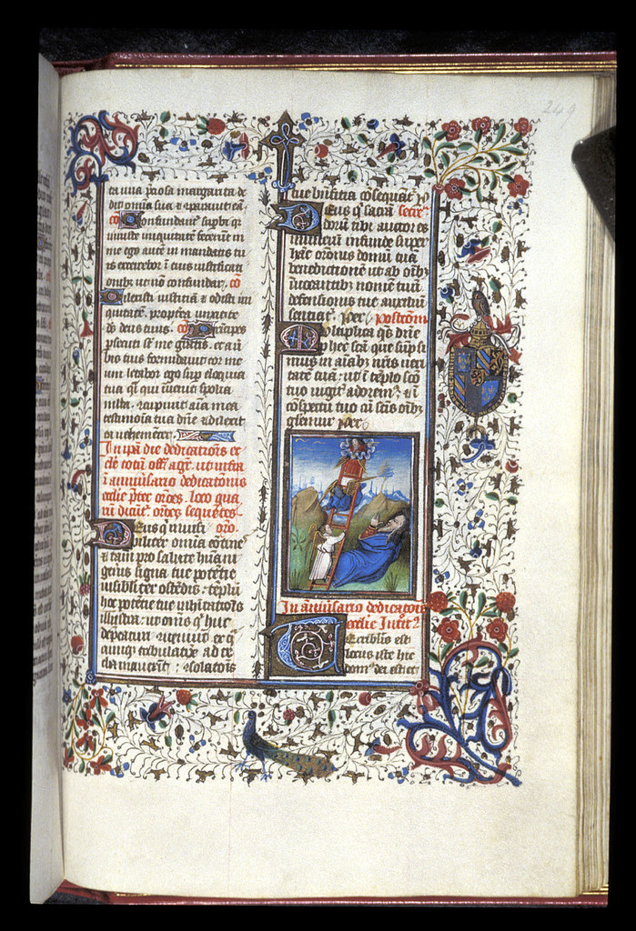 Jacob's Ladder from BL Harley 2967, f. 249