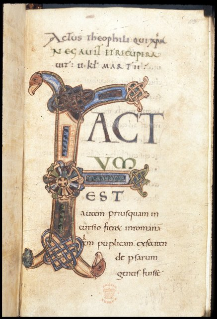Large initial with knotwork motifs and animal heads from BL Harley 3020, f. 113