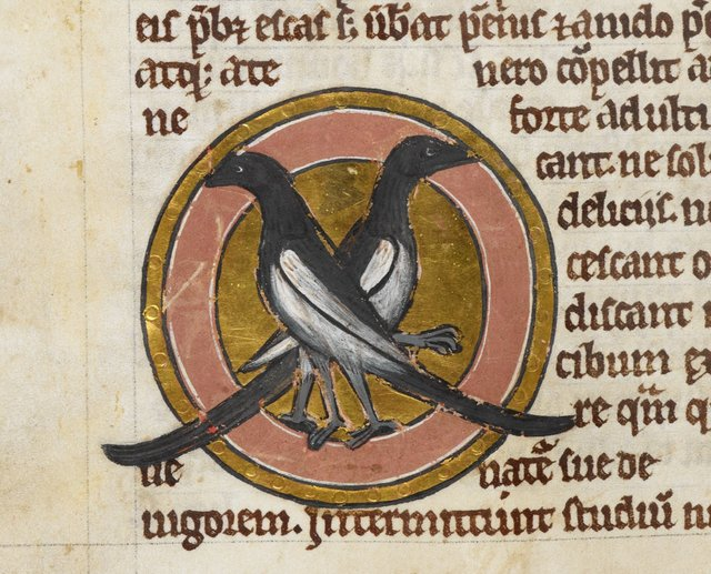 Magpies from BL Royal 12 C XIX, f. 42v