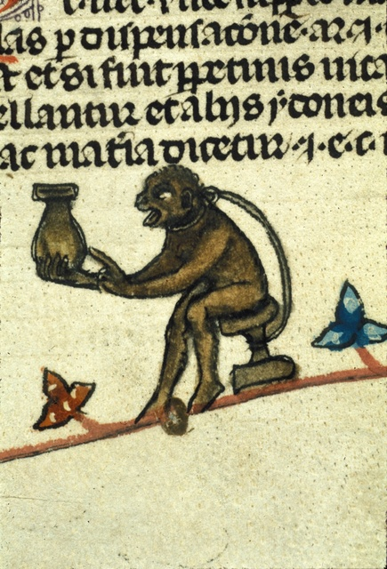 Monkey with a pot from BL Royal 10 E IV, f. 52