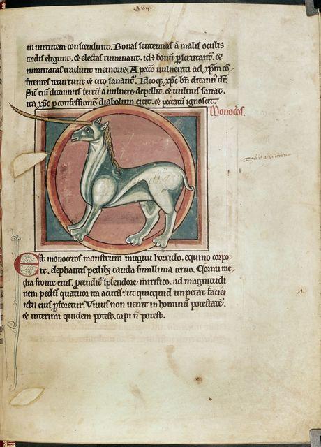 Monoceros (unicorn) from BL Harley 4751, f. 15