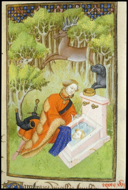 Narcissus from BL Harley 4431, f. 104