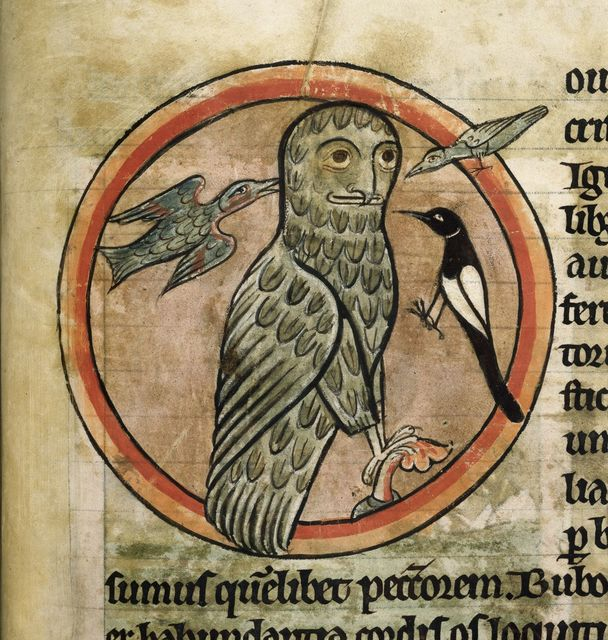 Owl from BL Harley 4751, f. 47