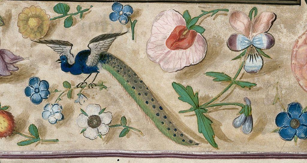Peacock from BL Royal 1 E V, f. 5