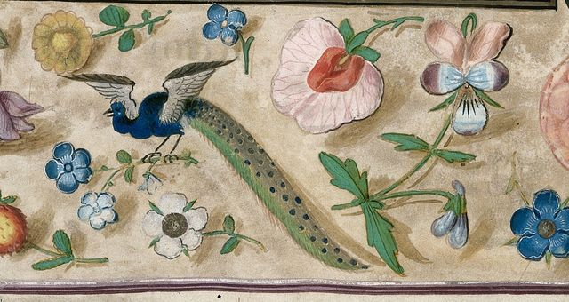 Peacock from BL Royal 1 E V, f. 5