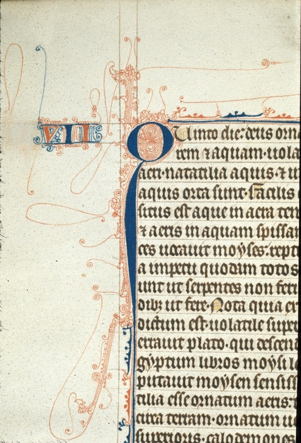 Pen-flourished initial from BL Royal 3 D VI, f. 6v
