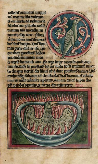 Phoenix from BL Harley 4751, f. 45