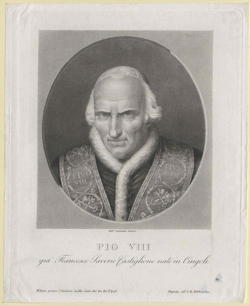 Pius VIII., papa