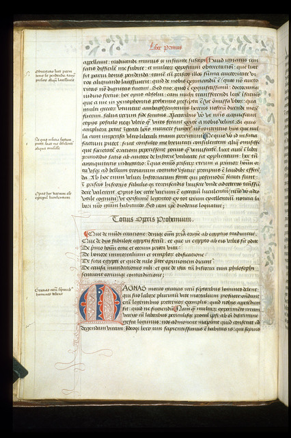 Puzzle initial from BL Arundel 93, f. 3v
