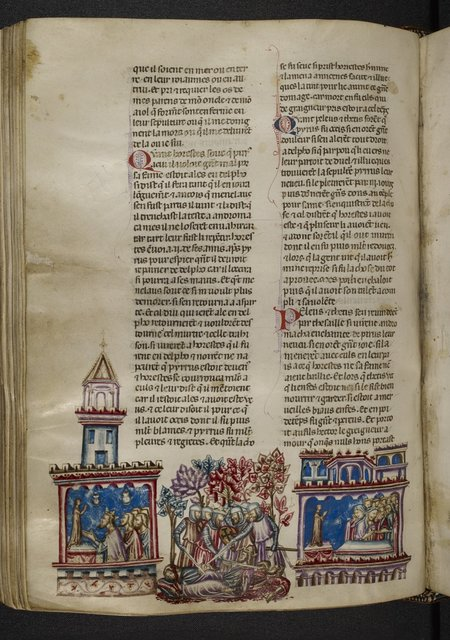 Pyrrhus from BL Royal 20 D I, f. 188v