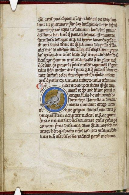 Quail from BL Royal 12 C XIX, f. 44v