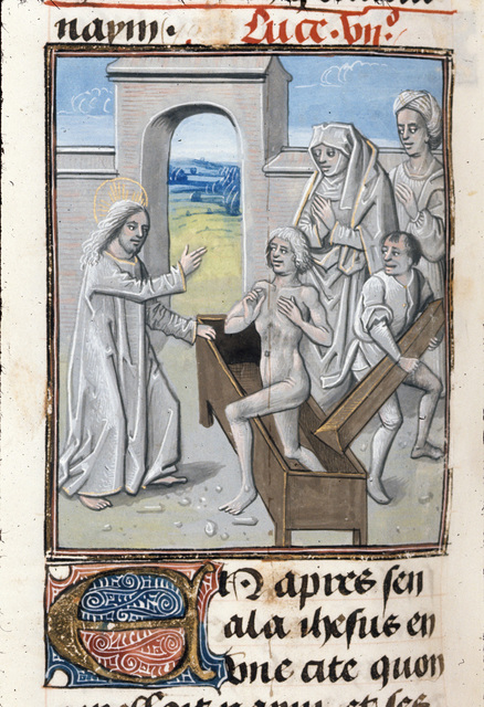 Raising of the widow's son from BL Royal 15 D I, f. 277v