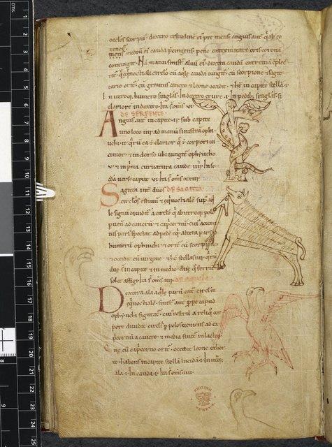 Serpens, Sagitta, and Aquila from BL Royal 13 A XI, f. 107v