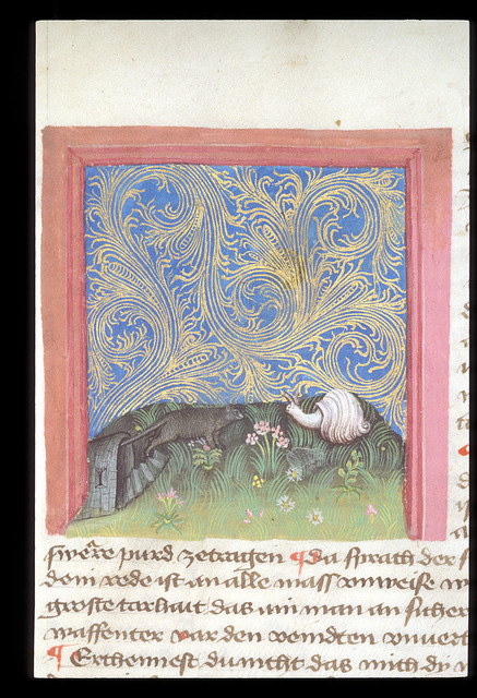 Snail and mouse in conflict from BL Eg 1121, f. 10