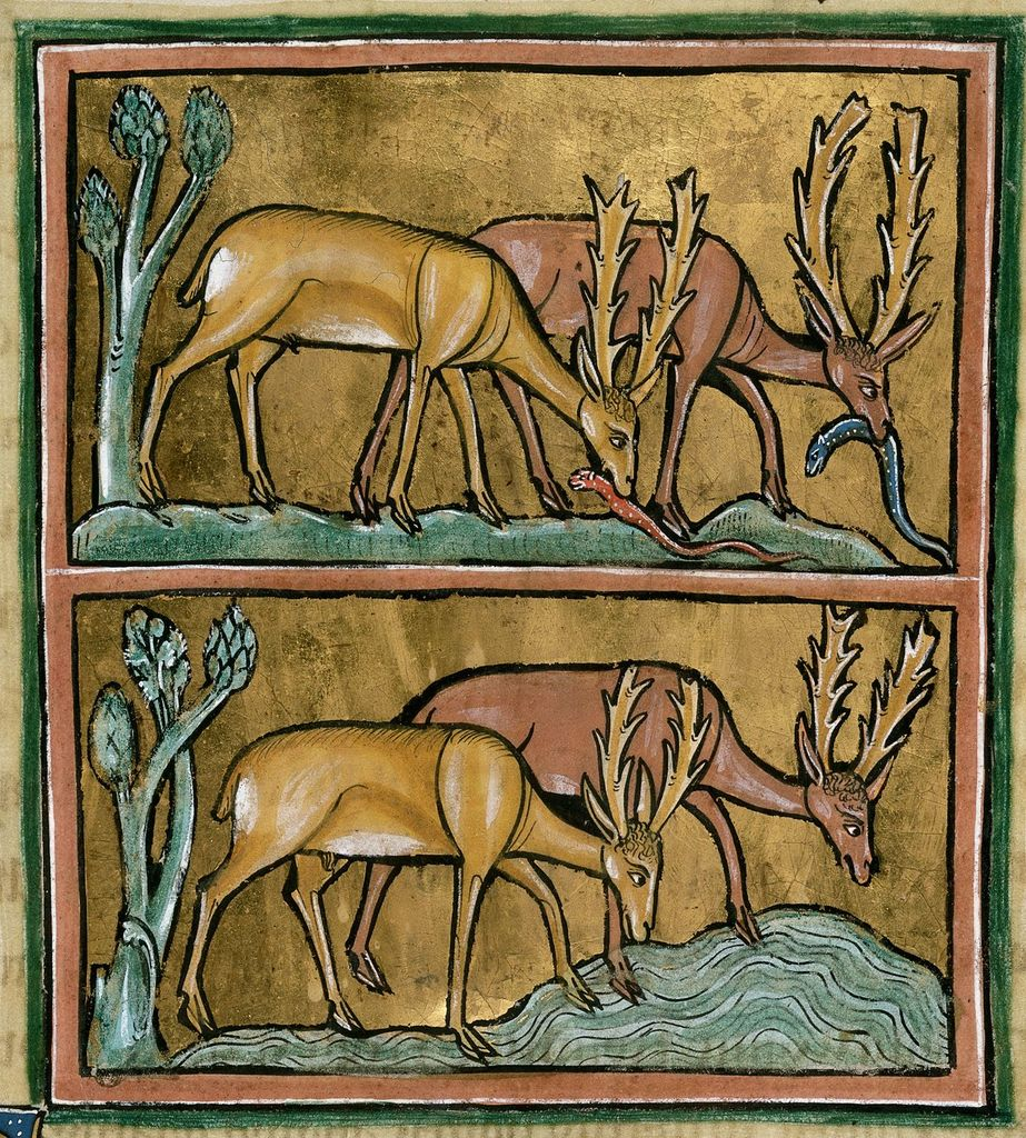 Stags from BL Royal 12 F XIII, f. 19
