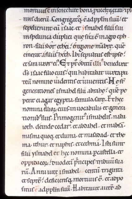 Text from BL Harley 2803, f. 15v