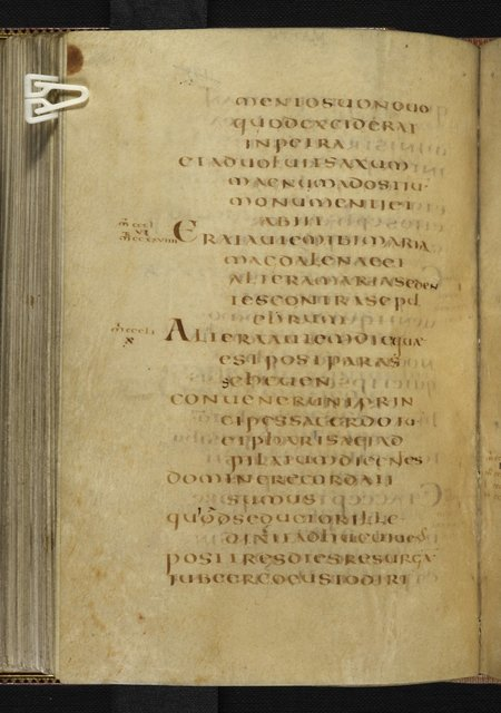 Text page from BL Harley 1775, f. 137v