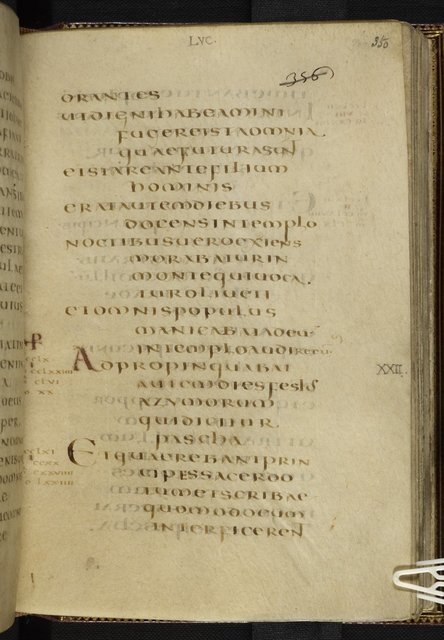 Text page from BL Harley 1775, f. 350