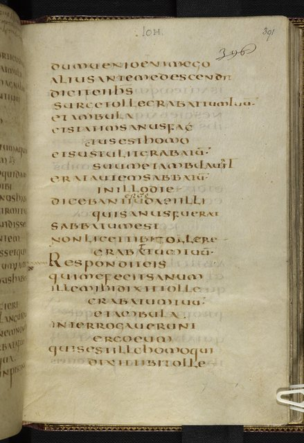 Text page from BL Harley 1775, f. 391