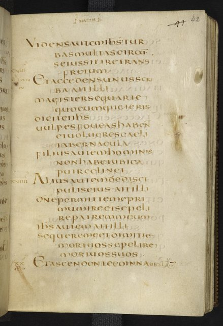 Text page from BL Harley 1775, f. 42