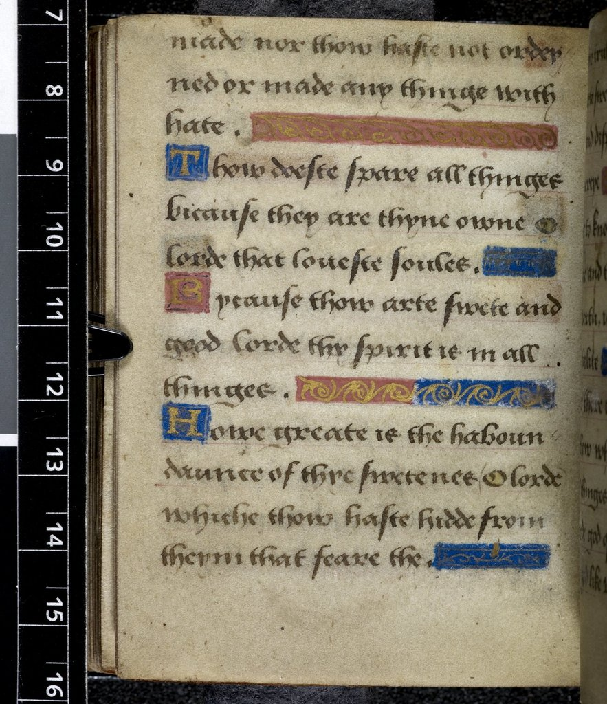 Text page from BL Harley 2342, f. 125v