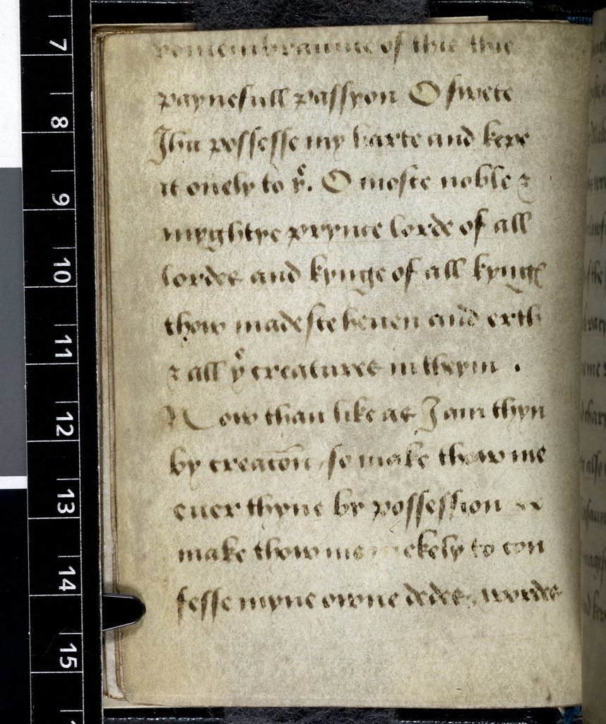 Text page from BL Harley 2342, f. 26v