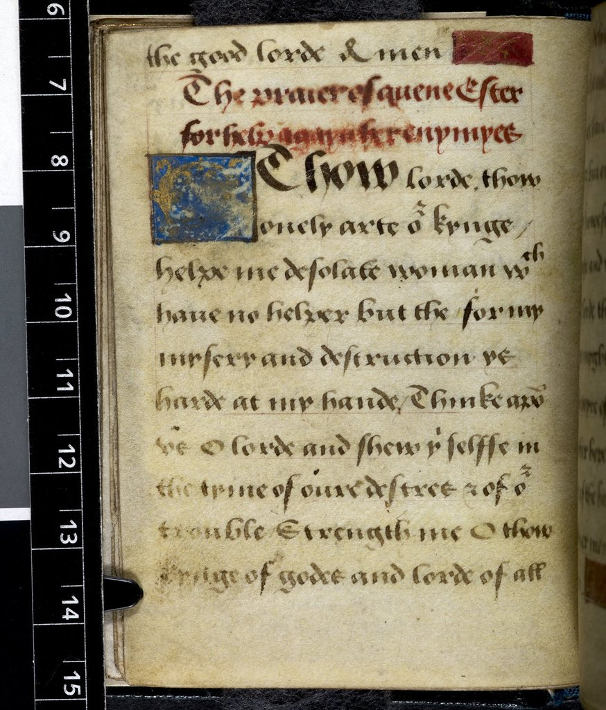 Text page from BL Harley 2342, f. 27v