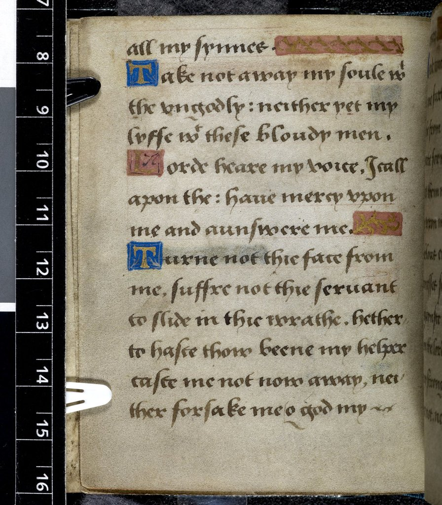 Text page from BL Harley 2342, f. 80v