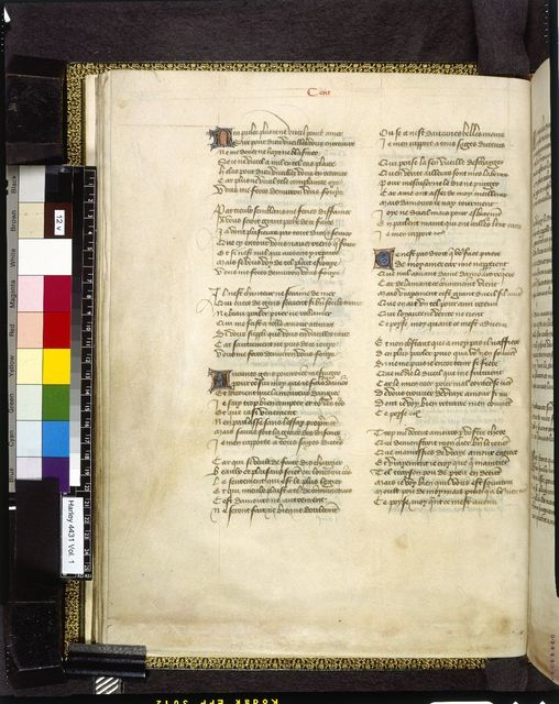 Text page from BL Harley 4431, f. 12v