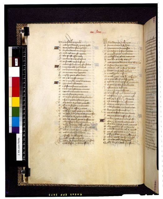Text page from BL Harley 4431, f. 191v