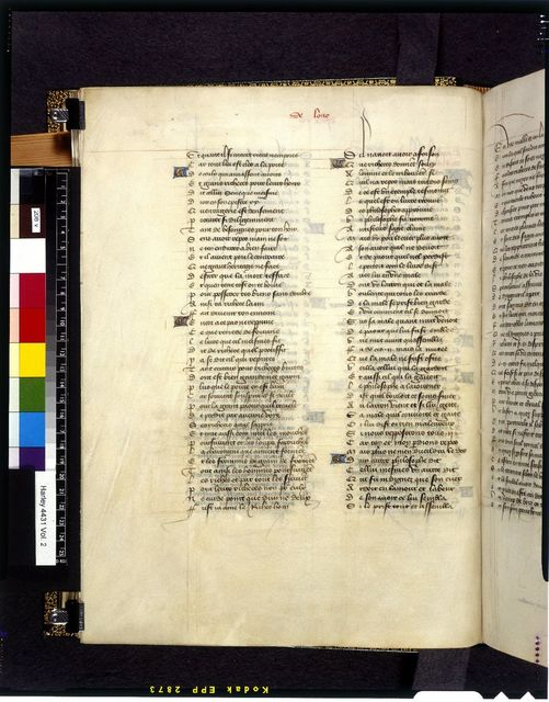Text page from BL Harley 4431, f. 208v